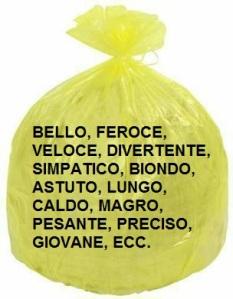 SACCO GIALLO AGGETTIVI